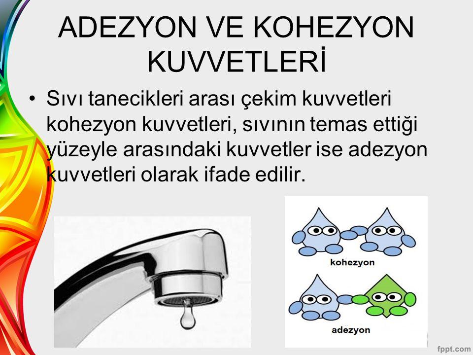 ADEZYON VE KOHEZYON KUVVETLERİ Sıvı tanecikleri arası çekim kuvvetleri kohezyon kuvvetleri, sıvının temas ettiği yüzeyle arasındaki kuvvetler ise adez