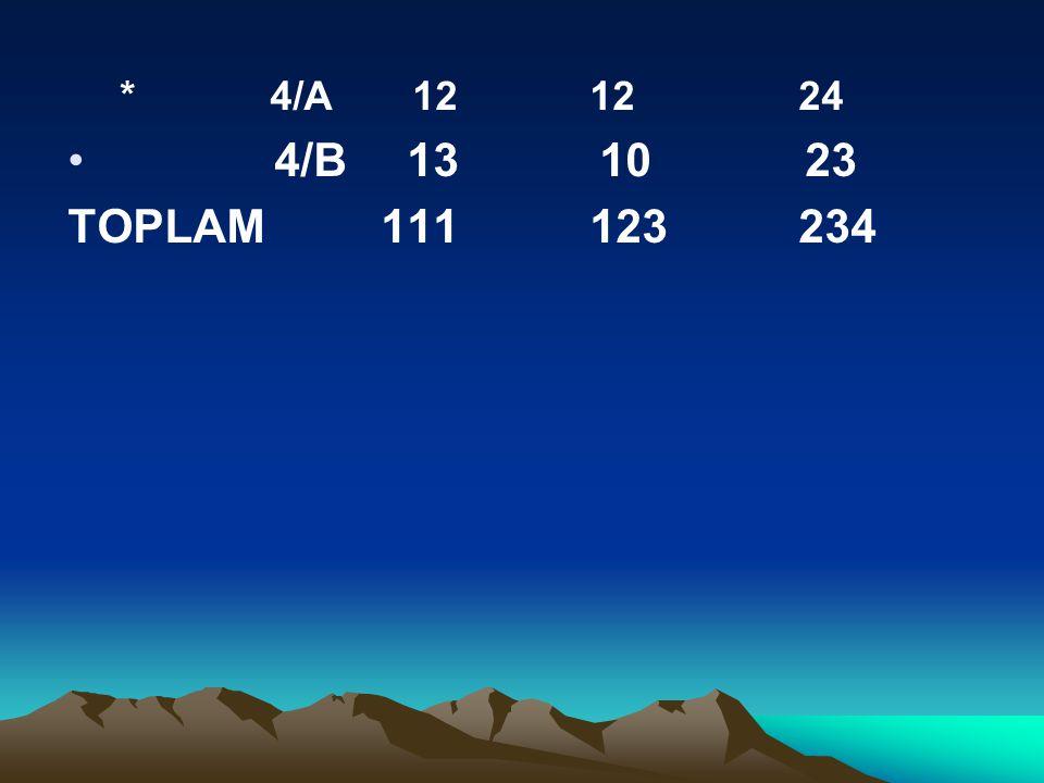 * 4/A 12 1224 4/B 13 10 23 TOPLAM111123234