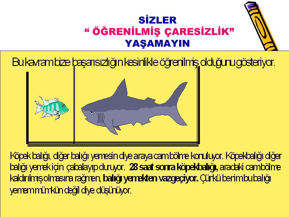 www.rehberlikportali.comwww.rehberlikportali.com © Hayat Rehberiniz 13.08.201533