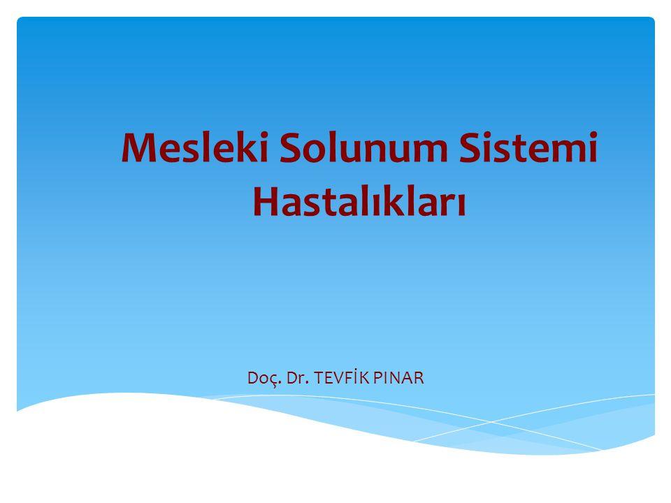 Mesleki Solunum Sistemi Hastalıkları Doç. Dr. TEVFİK PINAR
