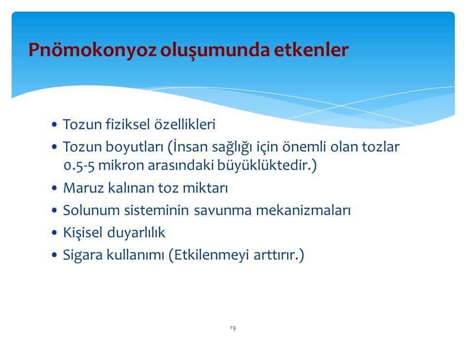 Tozun fiziksel özellikleri Tozun boyutları (İnsan sağlığı için önemli olan tozlar 0.5-5 mikron arasındaki büyüklüktedir.) Maruz kalınan toz miktarı So