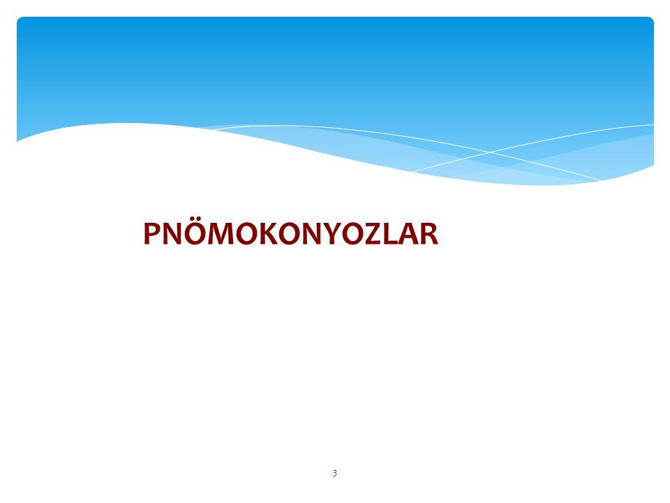 PNÖMOKONYOZLAR 3