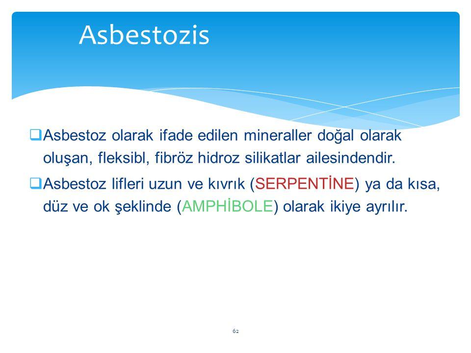  Asbestoz olarak ifade edilen mineraller doğal olarak oluşan, fleksibl, fibröz hidroz silikatlar ailesindendir.  Asbestoz lifleri uzun ve kıvrık (SE