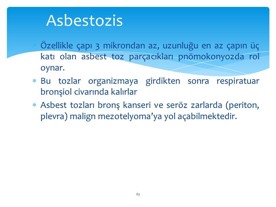  Özellikle çapı 3 mikrondan az, uzunluğu en az çapın üç katı olan asbest toz parçacıkları pnömokonyozda rol oynar.  Bu tozlar organizmaya girdikten