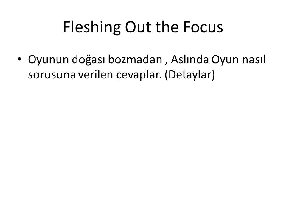 Fleshing Out the Focus Oyunun doğası bozmadan, Aslında Oyun nasıl sorusuna verilen cevaplar.
