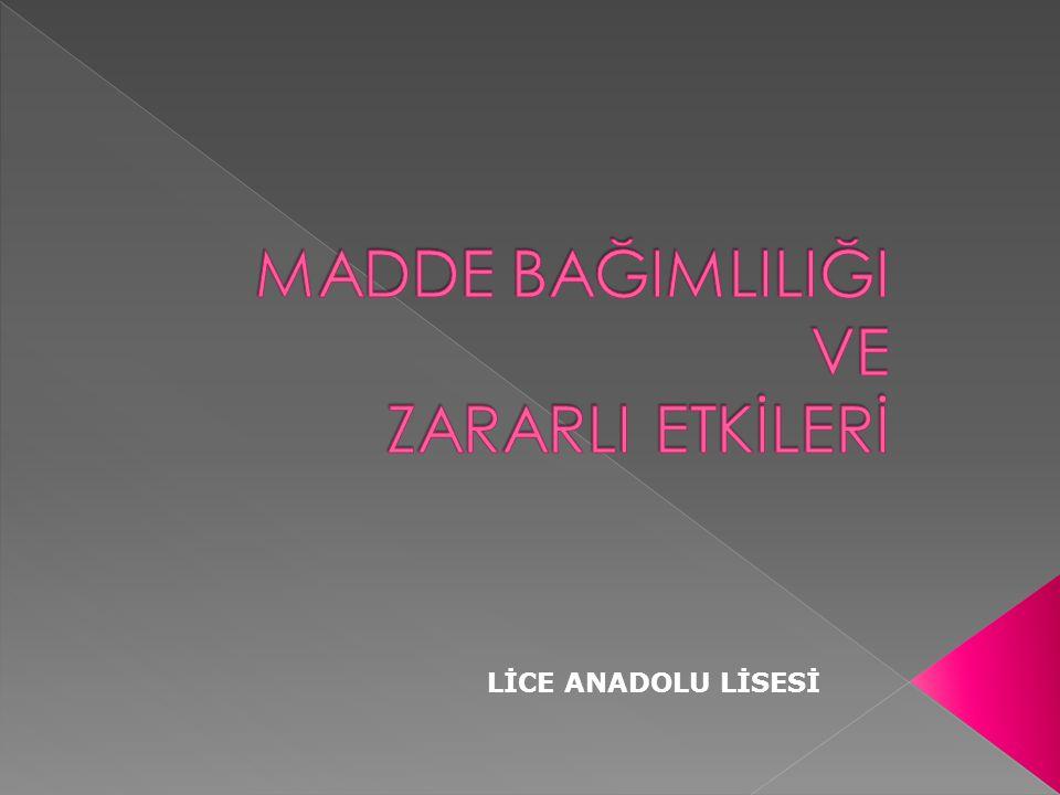 LİCE ANADOLU LİSESİ