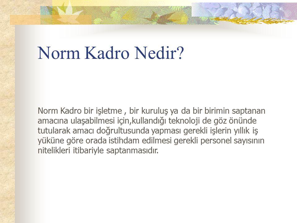 Norm Kadro Nedir? Norm Kadro bir işletme, bir kuruluş ya da bir birimin saptanan amacına ulaşabilmesi için,kullandığı teknoloji de göz önünde tutulara
