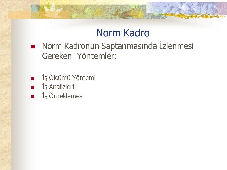 Norm Kadro Norm Kadronun Saptanmasında İzlenmesi Gereken Yöntemler: İş Ölçümü Yöntemi İş Analizleri İş Örneklemesi
