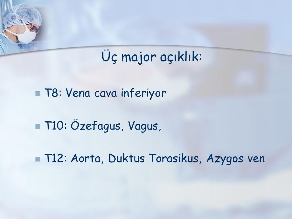 Üç major açıklık: T8: Vena cava inferiyor T10: Özefagus, Vagus, T12: Aorta, Duktus Torasikus, Azygos ven