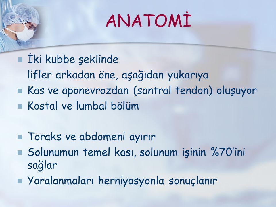 ANATOMİ İki kubbe şeklinde lifler arkadan öne, aşağıdan yukarıya Kas ve aponevrozdan (santral tendon) oluşuyor Kostal ve lumbal bölüm Toraks ve abdome