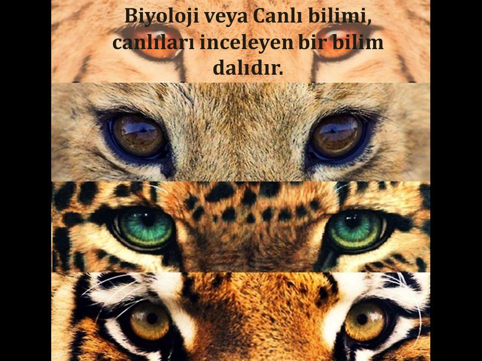 Biyoloji veya Canlı bilimi, canlıları inceleyen bir bilim dalıdır.