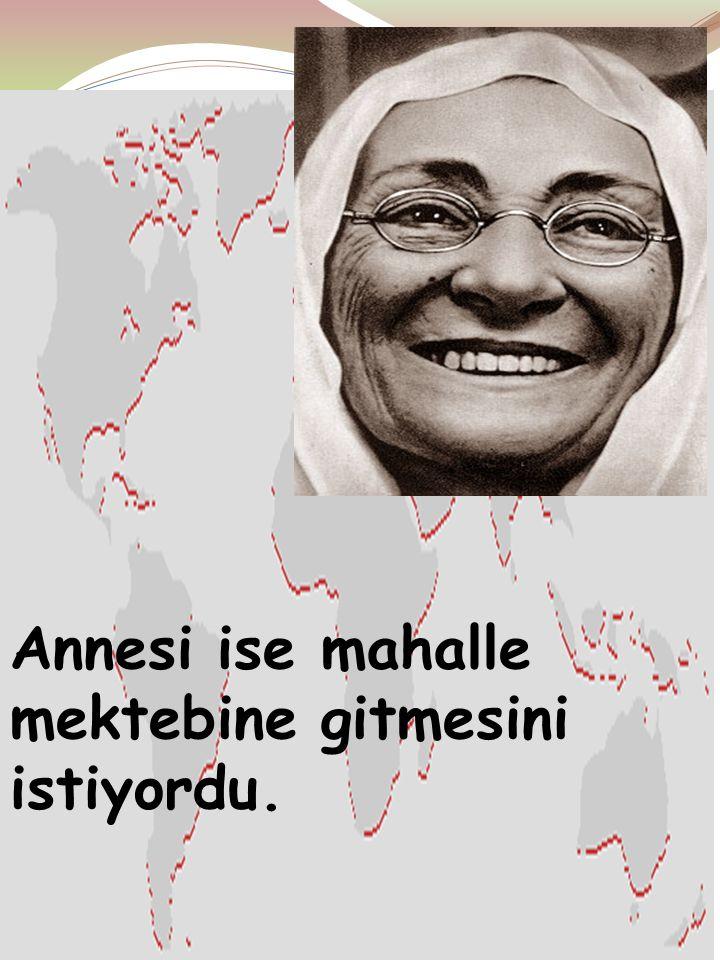 Ayten IŞILDAĞ6 Atatürk'ün babası,memurluk yapıyordu Oğlu Mustafa'nın iyi bir eğitim almasını ve O'nun Şemsi Efendi İlkokulu'na gitmesini istiyordu.