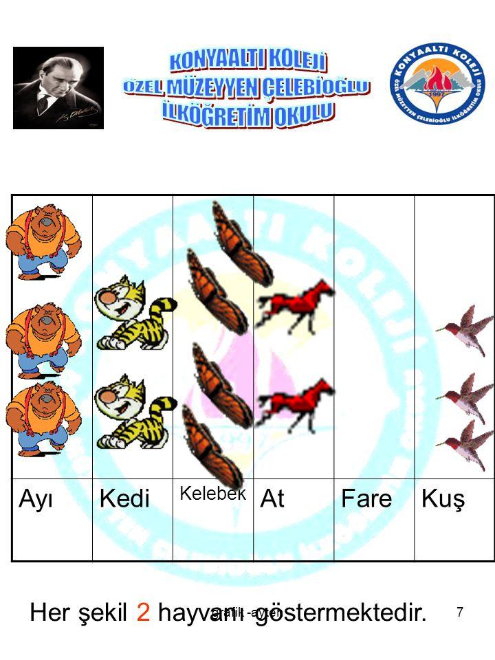 AyıKedi Kelebek AtFareKuş Her şekil 2 hayvanı göstermektedir. 7grafik -ayten