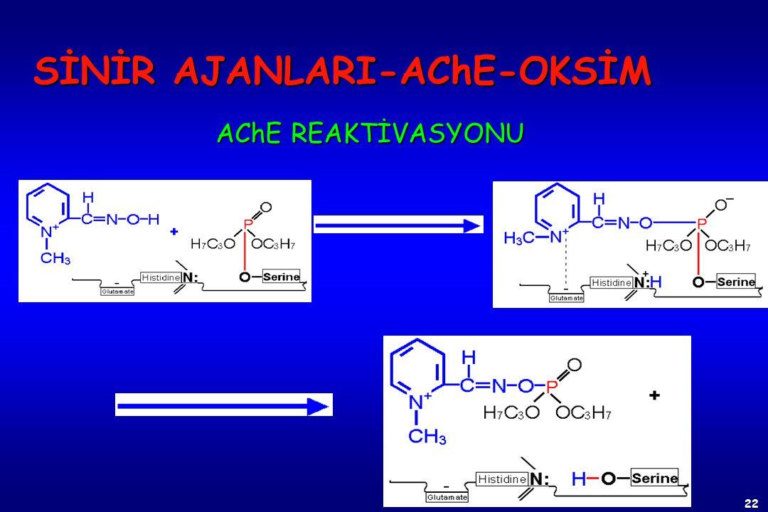 21 AChE ESKİMESİ SİNİR AJANLARI-AChE Bir alkil grubunun yerine hidroksil