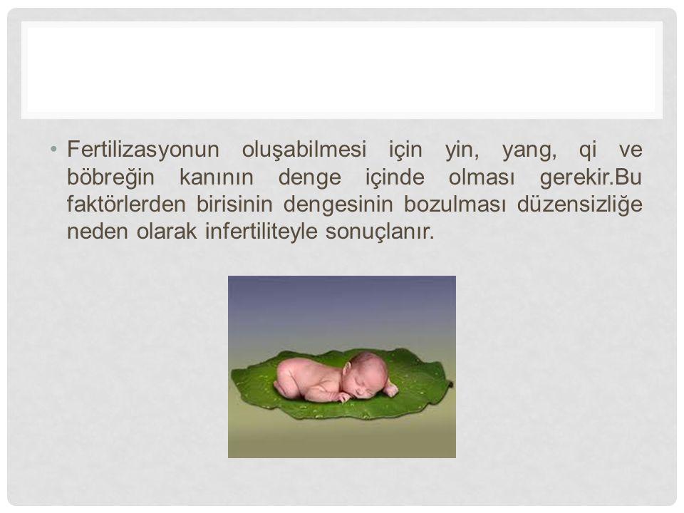 BATI TIBBINA GÖRE KADIN İNFERTİLİTESİNE SEBEP OLAN TIBBİ PATOLOJİLER 1.Ovaryan faktörler 2.Fallop tüpü ile ilgili faktörler 3.Uterin faktörler 4.Cervikal faktörler
