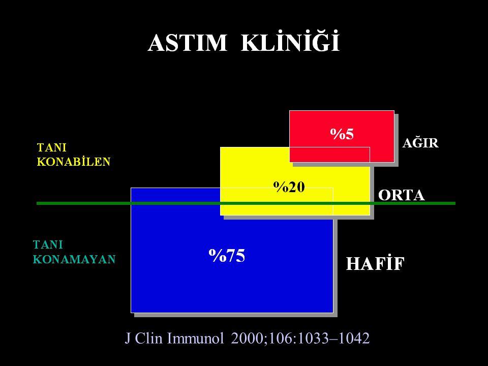 J Clin Immunol 2000;106:1033–1042.