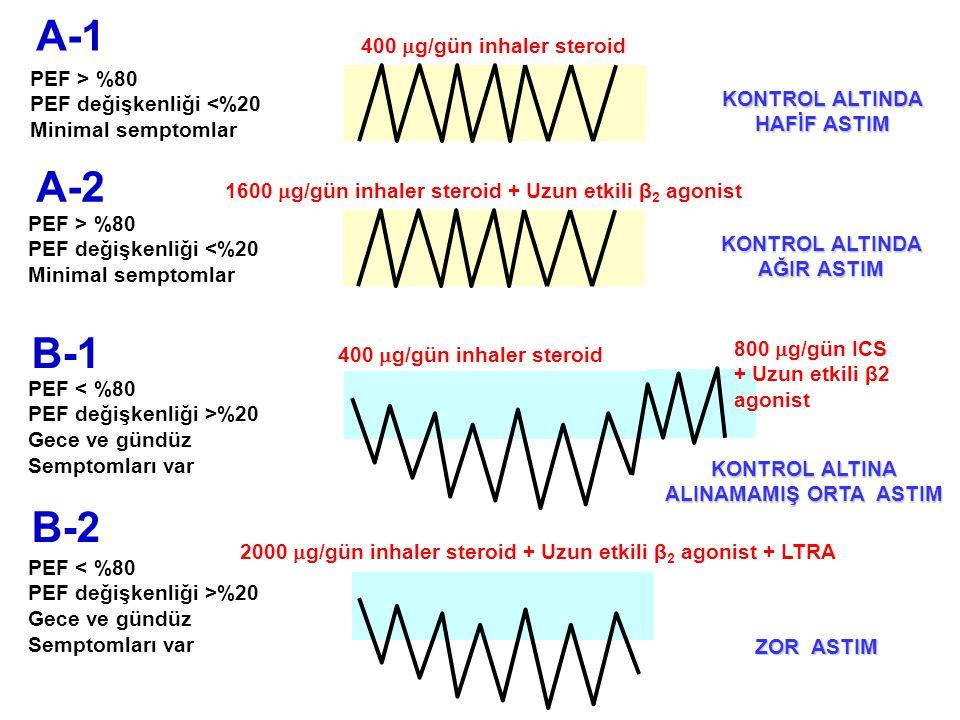 A-2 B-2 PEF < %80 PEF değişkenliği >%20 Gece ve gündüz Semptomları var PEF < %80 PEF değişkenliği >%20 Gece ve gündüz Semptomları var PEF > %80 PEF de