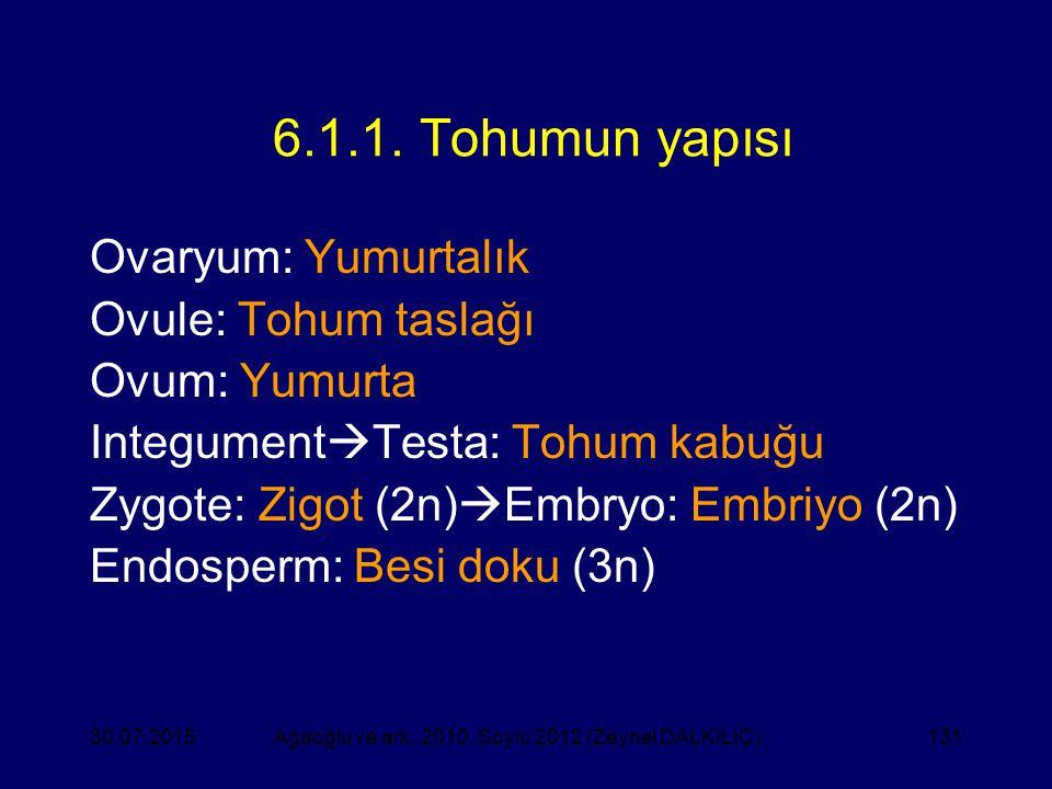 131 6.1.1. Tohumun yapısı Ovaryum: Yumurtalık Ovule: Tohum taslağı Ovum: Yumurta Integument  Testa: Tohum kabuğu Zygote: Zigot (2n)  Embryo: Embriyo