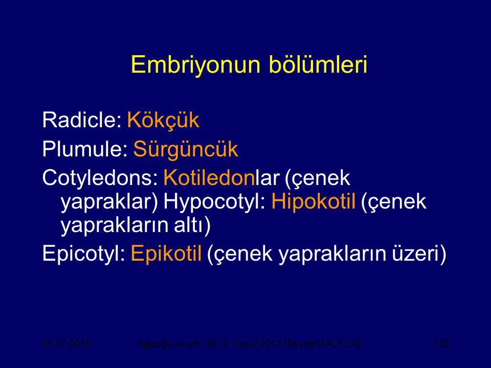 132 Embriyonun bölümleri Radicle: Kökçük Plumule: Sürgüncük Cotyledons: Kotiledonlar (çenek yapraklar) Hypocotyl: Hipokotil (çenek yaprakların altı) E