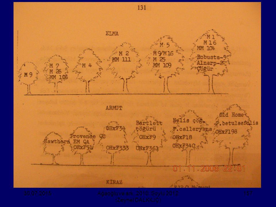 30.07.2015Ağaoğlu ve ark. 2010, Soylu 2012 (Zeynel DALKILIÇ) 157