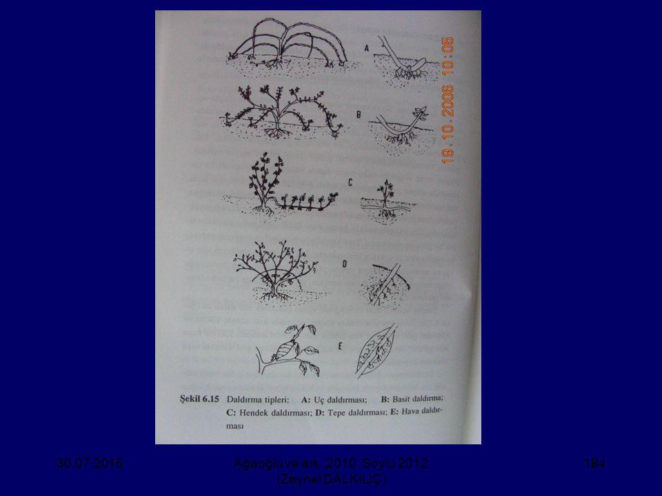 30.07.2015Ağaoğlu ve ark. 2010, Soylu 2012 (Zeynel DALKILIÇ) 184
