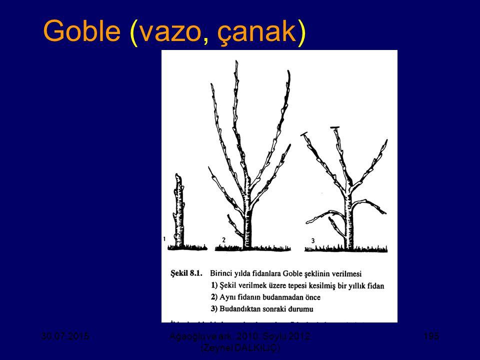 Goble (vazo, çanak) 30.07.2015Ağaoğlu ve ark. 2010, Soylu 2012 (Zeynel DALKILIÇ) 195
