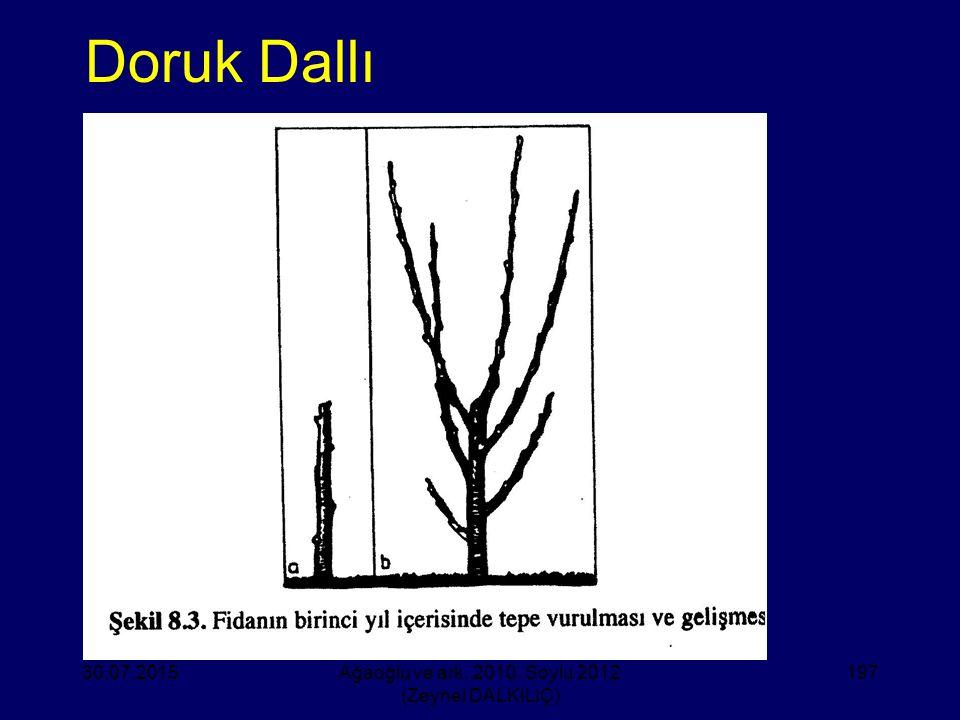 Doruk Dallı 30.07.2015Ağaoğlu ve ark. 2010, Soylu 2012 (Zeynel DALKILIÇ) 197
