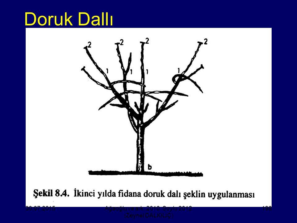 Doruk Dallı 30.07.2015Ağaoğlu ve ark. 2010, Soylu 2012 (Zeynel DALKILIÇ) 198