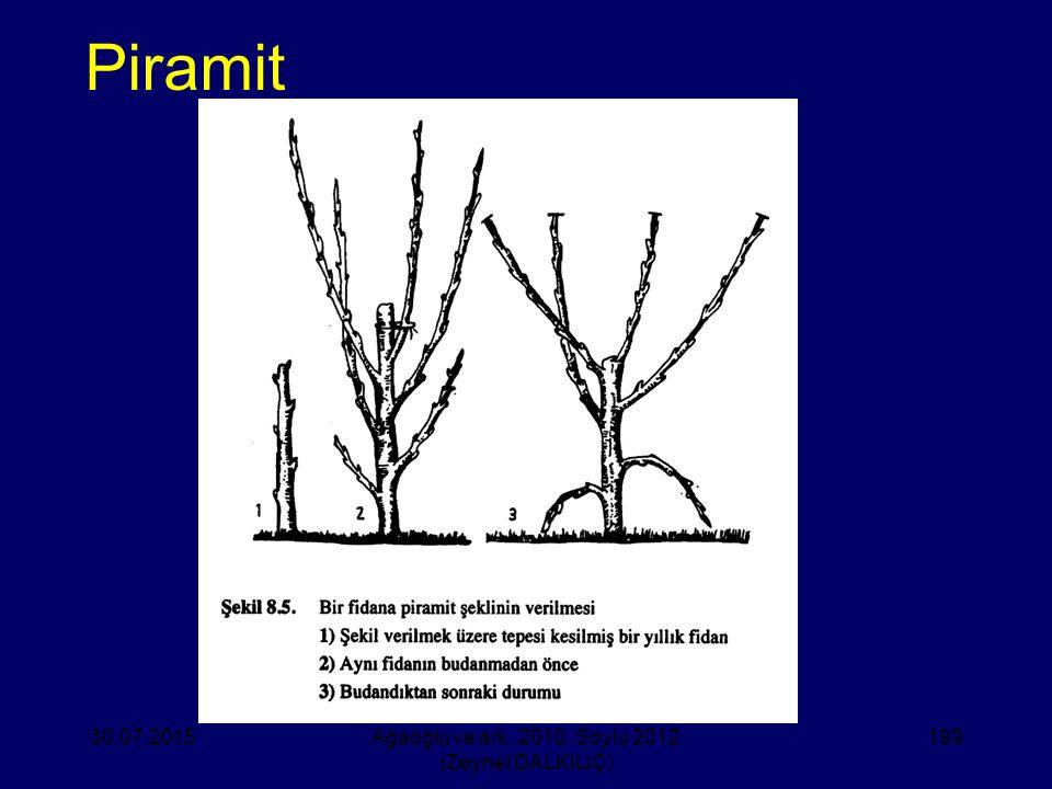 Piramit 30.07.2015Ağaoğlu ve ark. 2010, Soylu 2012 (Zeynel DALKILIÇ) 199