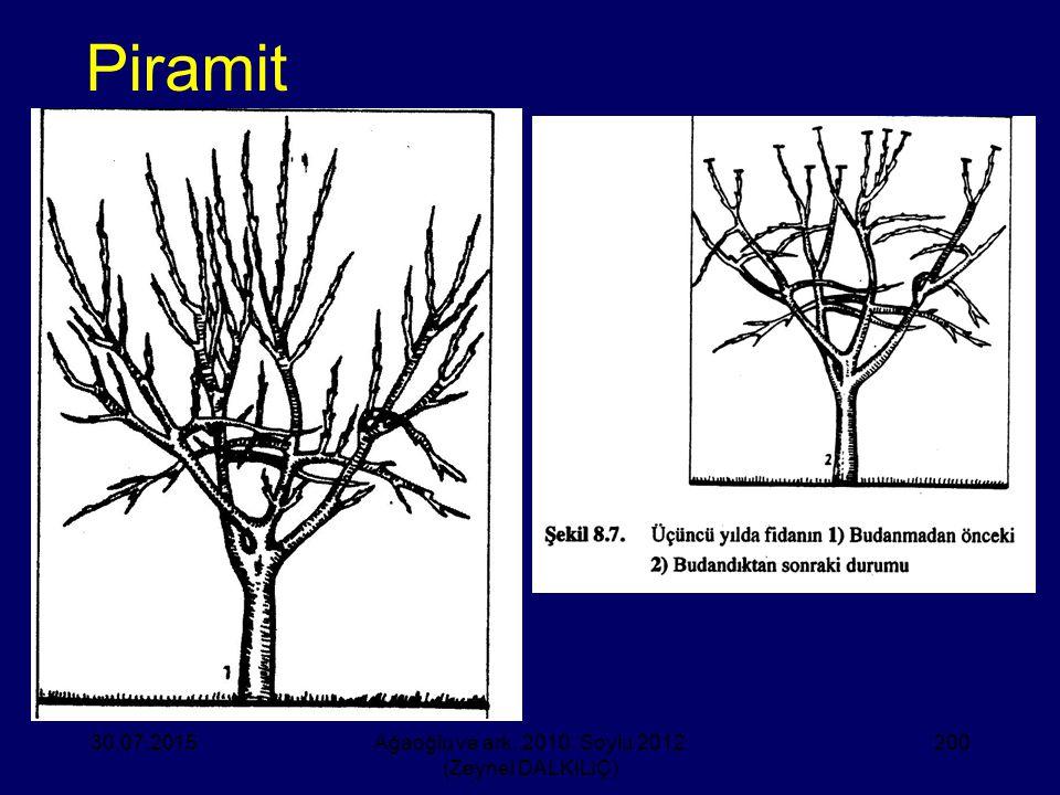 Piramit 30.07.2015Ağaoğlu ve ark. 2010, Soylu 2012 (Zeynel DALKILIÇ) 200