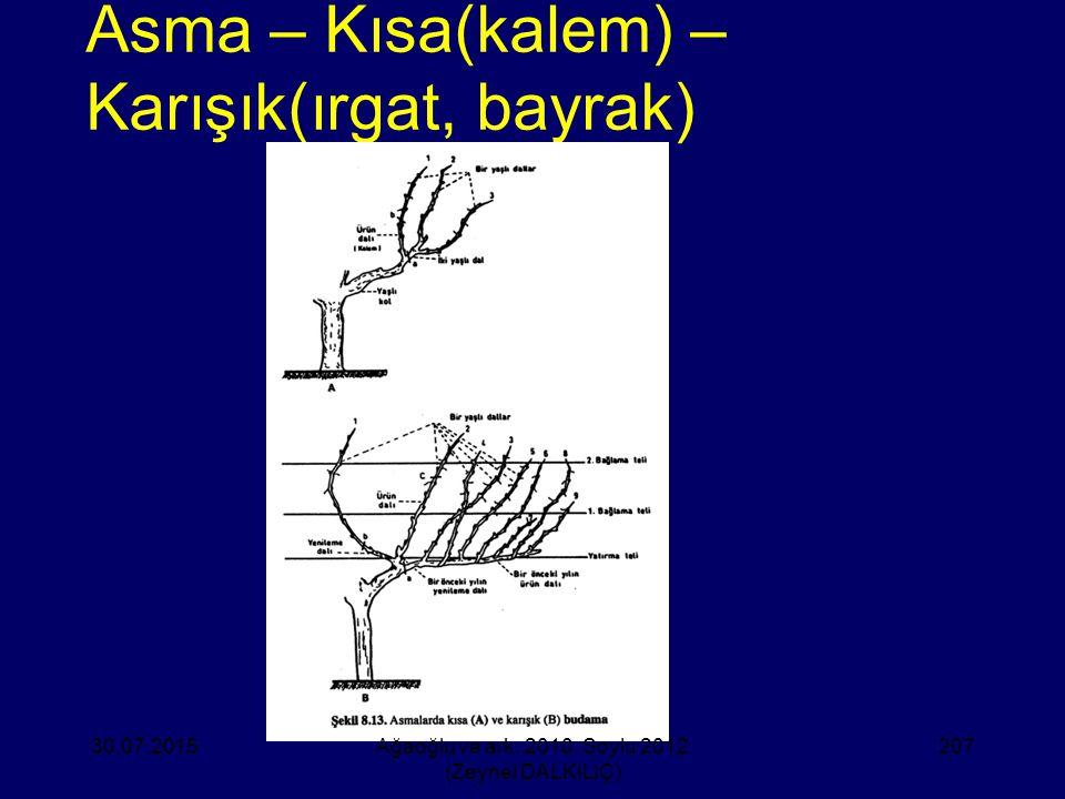 Asma – Kısa(kalem) – Karışık(ırgat, bayrak) 30.07.2015Ağaoğlu ve ark. 2010, Soylu 2012 (Zeynel DALKILIÇ) 207