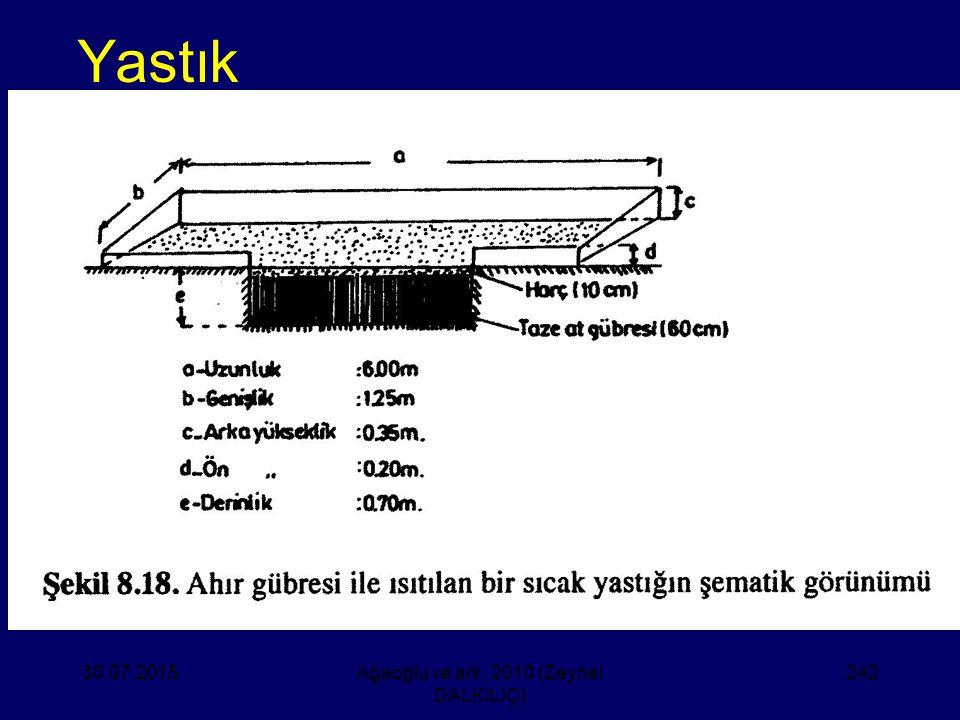 Yastık 30.07.2015Ağaoğlu ve ark. 2010 (Zeynel DALKILIÇ) 242