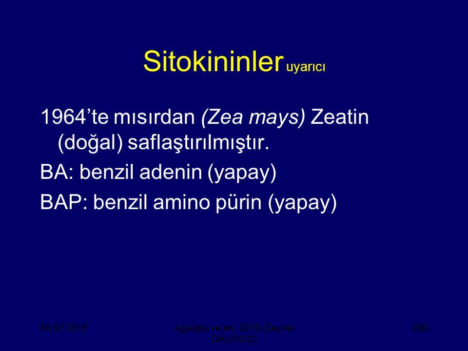 Sitokininler uyarıcı 1964'te mısırdan (Zea mays) Zeatin (doğal) saflaştırılmıştır. BA: benzil adenin (yapay) BAP: benzil amino pürin (yapay) 30.07.201