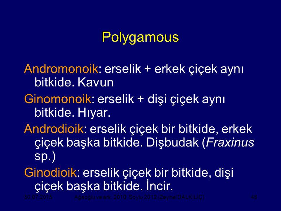 46 Polygamous Andromonoik: erselik + erkek çiçek aynı bitkide. Kavun Ginomonoik: erselik + dişi çiçek aynı bitkide. Hıyar. Androdioik: erselik çiçek b