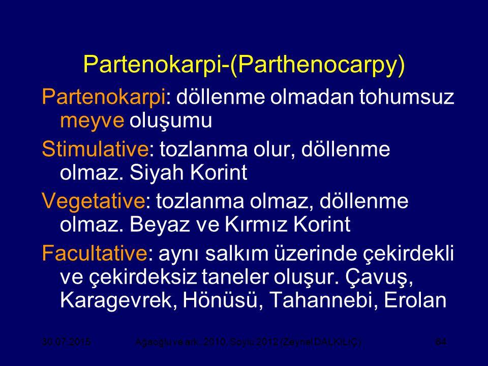 64 Partenokarpi-(Parthenocarpy) Partenokarpi: döllenme olmadan tohumsuz meyve oluşumu Stimulative: tozlanma olur, döllenme olmaz. Siyah Korint Vegetat