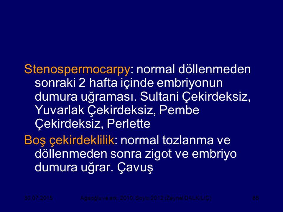 65 Stenospermocarpy: normal döllenmeden sonraki 2 hafta içinde embriyonun dumura uğraması. Sultani Çekirdeksiz, Yuvarlak Çekirdeksiz, Pembe Çekirdeksi