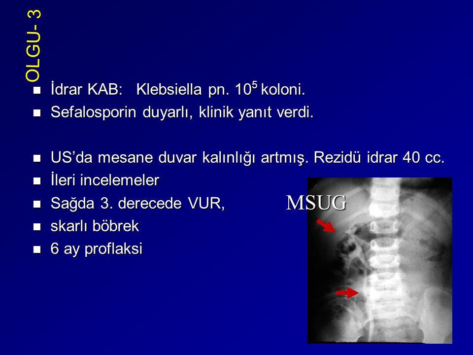 İdrar KAB: Klebsiella pn. 10 5 koloni. İdrar KAB: Klebsiella pn. 10 5 koloni. Sefalosporin duyarlı, klinik yanıt verdi. Sefalosporin duyarlı, klinik y