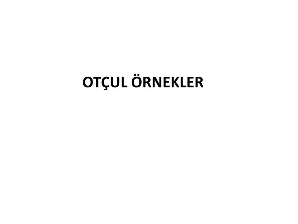 OTÇUL ÖRNEKLER
