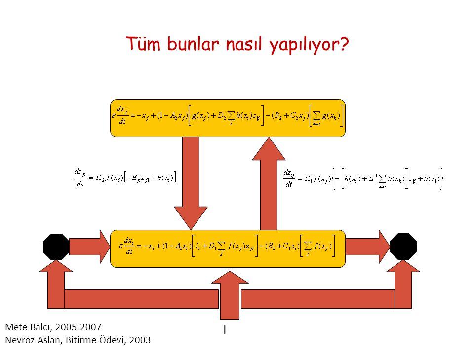 Tüm bunlar nasıl yapılıyor? I Mete Balcı, 2005-2007 Nevroz Aslan, Bitirme Ödevi, 2003