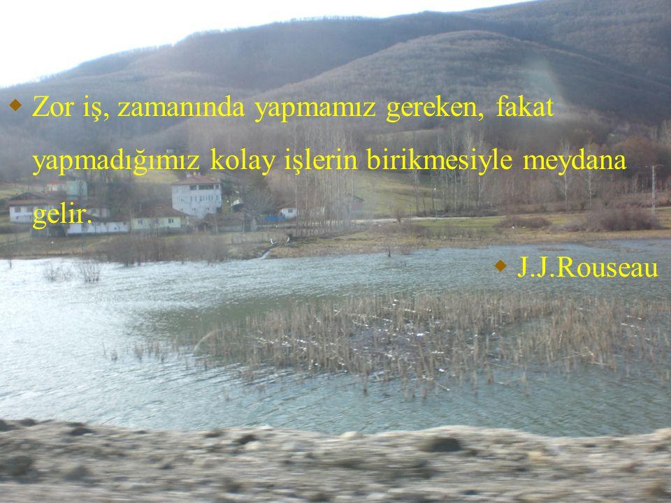  Zor iş, zamanında yapmamız gereken, fakat yapmadığımız kolay işlerin birikmesiyle meydana gelir.  J.J.Rouseau