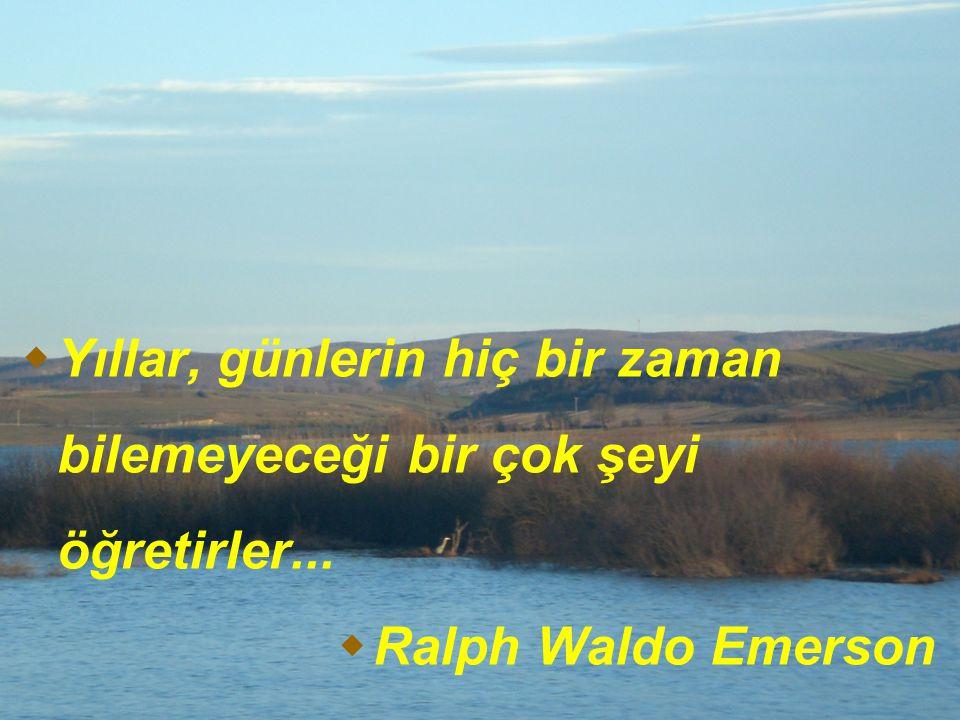  Yıllar, günlerin hiç bir zaman bilemeyeceği bir çok şeyi öğretirler...  Ralph Waldo Emerson