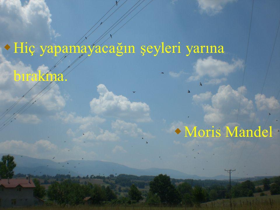  Hiç yapamayacağın şeyleri yarına bırakma.  Moris Mandel