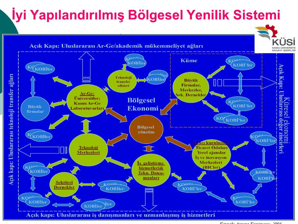 İyi Yapılandırılmış Bölgesel Yenilik Sistemi 11
