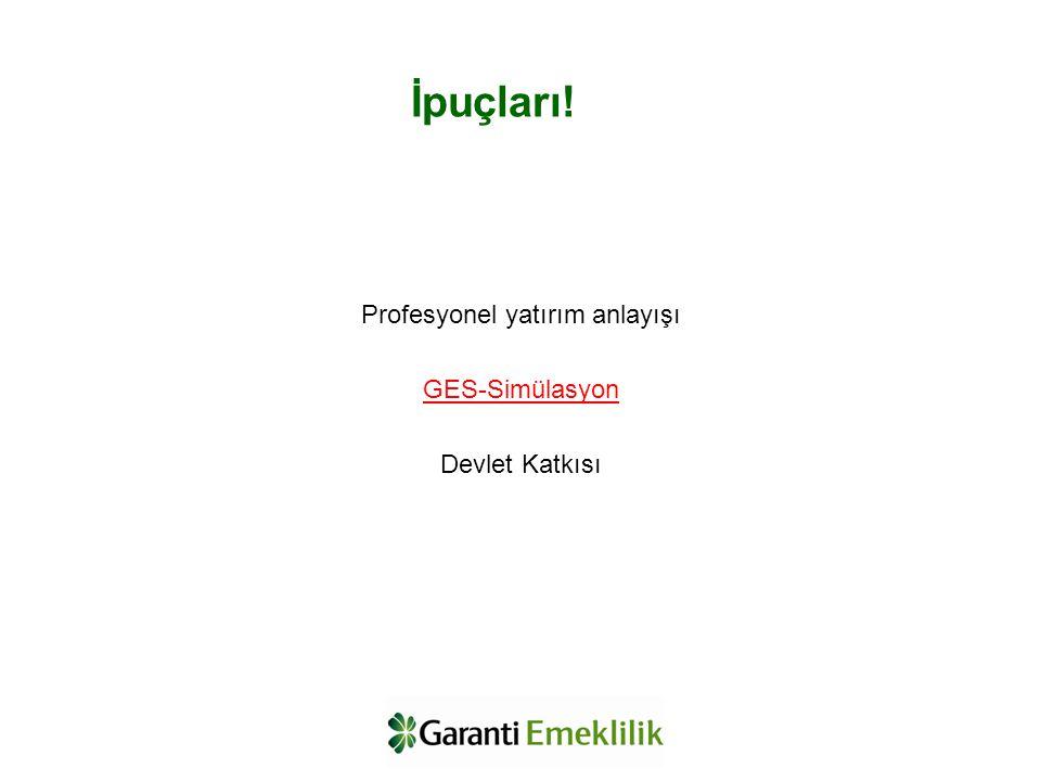 Profesyonel yatırım anlayışı GES-Simülasyon Devlet Katkısı İpuçları!