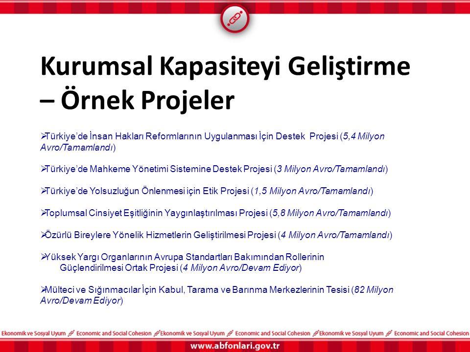 Kurumsal Kapasiteyi Geliştirme – Örnek Projeler  Türkiye'de İnsan Hakları Reformlarının Uygulanması İçin Destek Projesi (5,4 Milyon Avro/Tamamlandı)