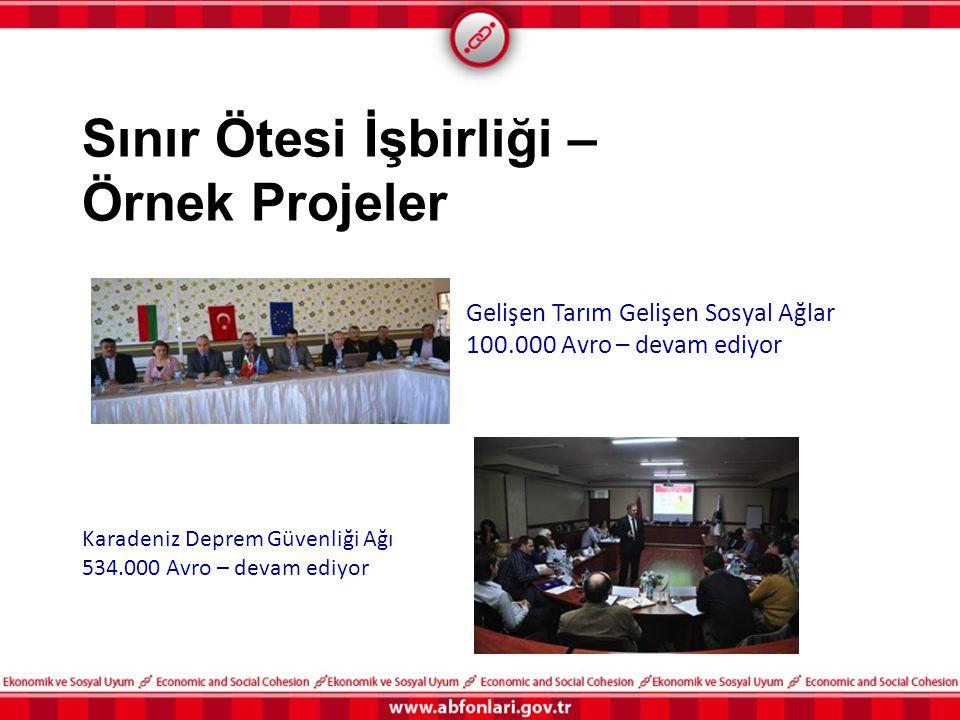 Sınır Ötesi İşbirliği – Örnek Projeler Gelişen Tarım Gelişen Sosyal Ağlar 100.000 Avro – devam ediyor Karadeniz Deprem Güvenliği Ağı 534.000 Avro – de