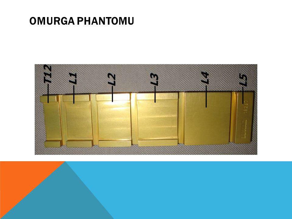 OMURGA PHANTOMU