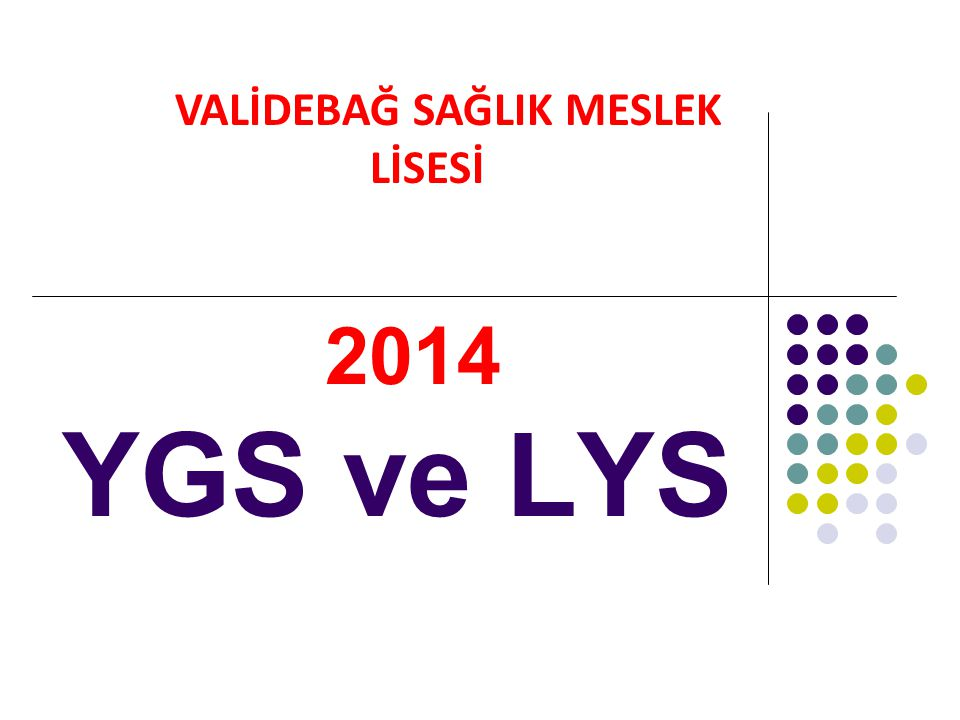 2014 YGS ve LYS VALİDEBAĞ SAĞLIK MESLEK LİSESİ