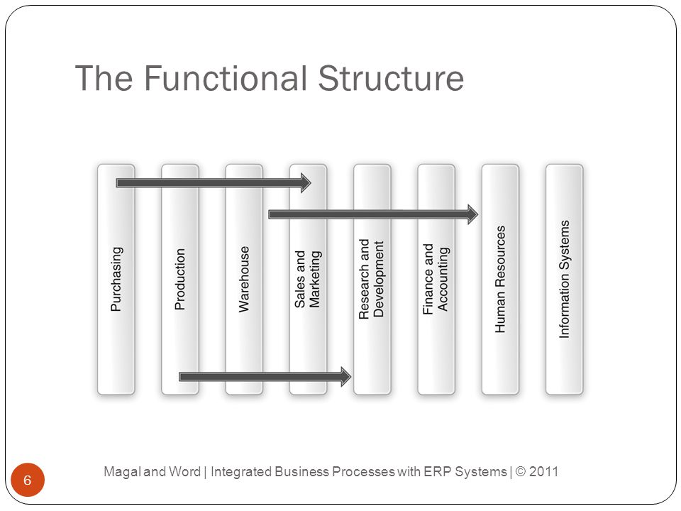The Functional Structure Magal and Word | Integrated Business Processes with ERP Systems | © 2011 6