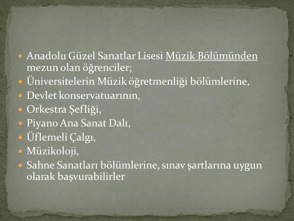 Anadolu Güzel Sanatlar Lisesi Müzik Bölümünden mezun olan öğrenciler; Üniversitelerin Müzik öğretmenliği bölümlerine, Devlet konservatuarının, Orkestr